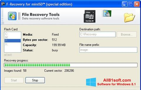 Screenshot F-Recovery SD for Windows 8.1