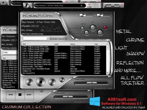 Screenshot RadioSure for Windows 8.1