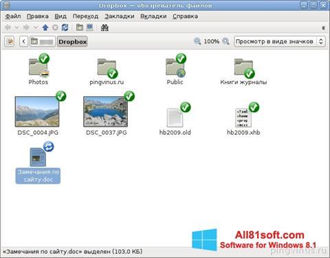 Screenshot Dropbox for Windows 8.1