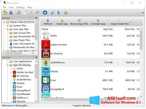 Screenshot iBackupBot for Windows 8.1