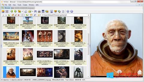 Screenshot XnView for Windows 8.1