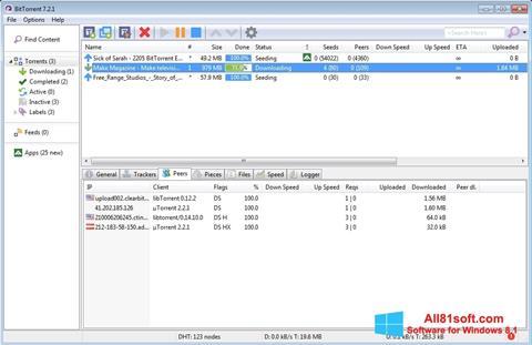 Screenshot BitTorrent for Windows 8.1