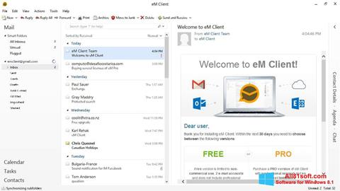 Screenshot eM Client for Windows 8.1