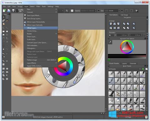 Screenshot Krita for Windows 8.1