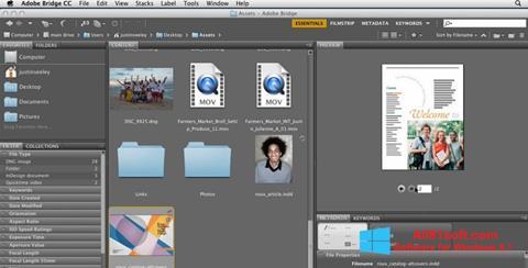 Screenshot Adobe Bridge for Windows 8.1