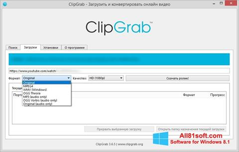 Screenshot ClipGrab for Windows 8.1