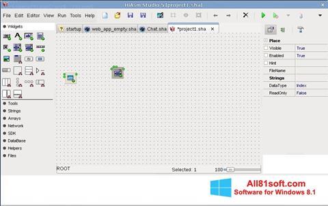 Screenshot HiAsm for Windows 8.1