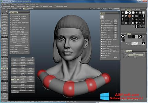 Screenshot 3D-Coat for Windows 8.1