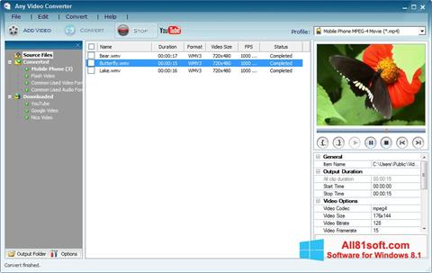 Screenshot Any Video Converter for Windows 8.1