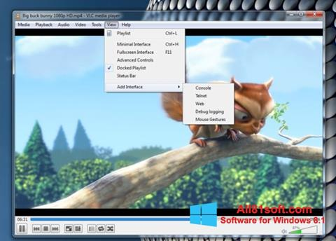 Screenshot VLC Media Player for Windows 8.1