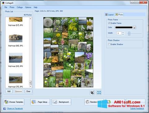 Screenshot CollageIt for Windows 8.1
