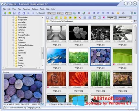 Screenshot FastStone Image Viewer for Windows 8.1