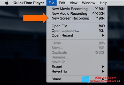 Screenshot QuickTime for Windows 8.1