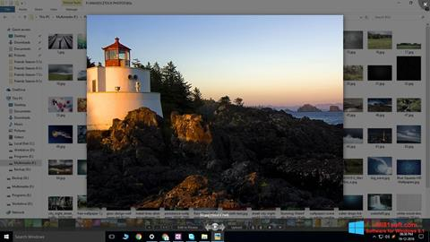 Screenshot Picasa Photo Viewer for Windows 8.1