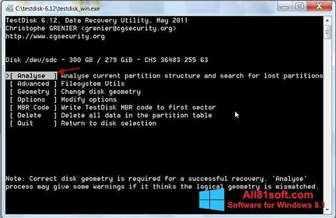 Screenshot TestDisk for Windows 8.1