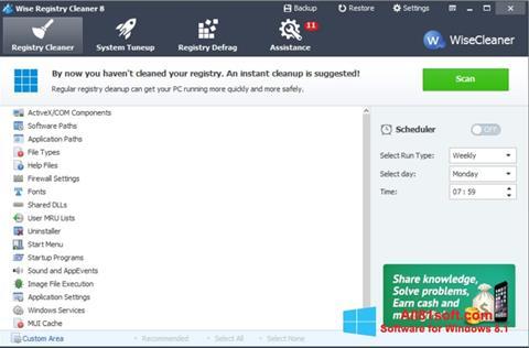 Screenshot Wise Registry Cleaner for Windows 8.1