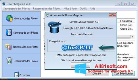 Screenshot Driver Magician for Windows 8.1