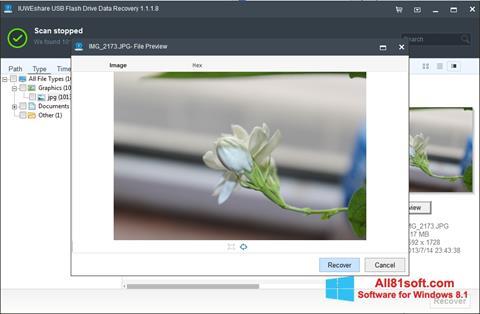 Screenshot USB Flash Drive Recovery for Windows 8.1