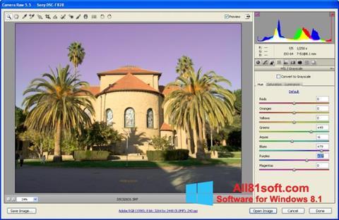 Screenshot Adobe Camera Raw for Windows 8.1