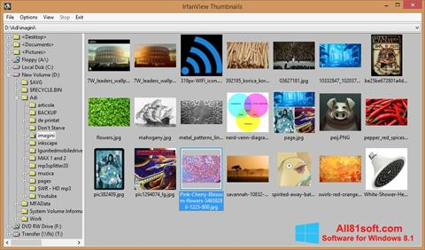 Screenshot IrfanView for Windows 8.1